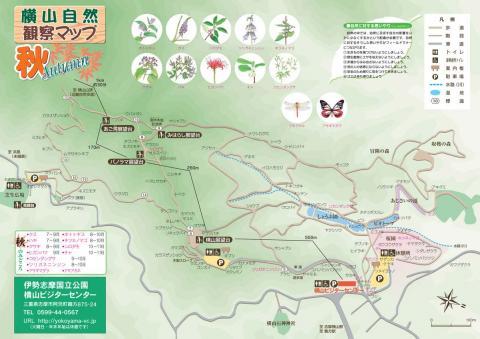 autumn map