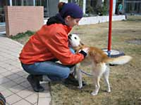 dog_20110415000818.jpg