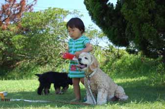 hasaki02_20110830140948.jpg