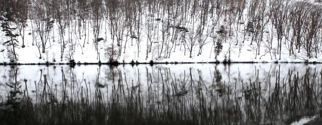 冬でも凍ることのない丸池