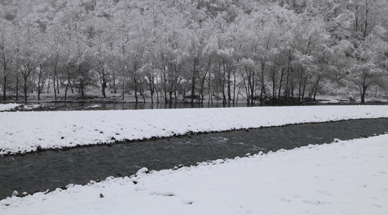 降雪の三峰川