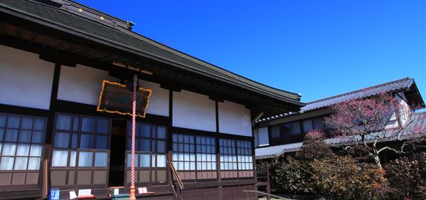 天澤寺と民家の梅