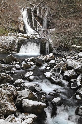うっすら冠雪のこもれびの滝