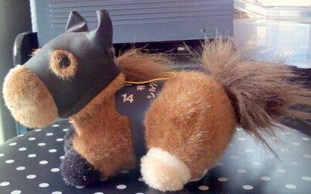 第42回有馬記念優勝馬シルクジャテイス
