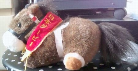 第58回日本ダービー優勝馬トウカイテイオ