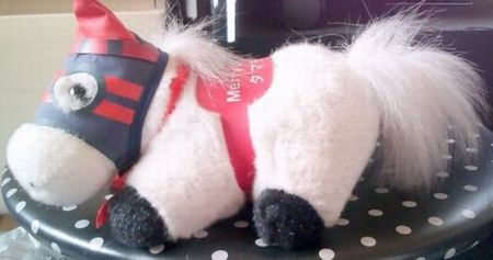 第33回有馬記念優秀馬タマモクロス