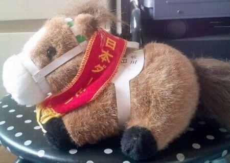 第59回日本ダービー優勝馬ミホノブルボン