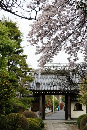 20100410近所のお寺