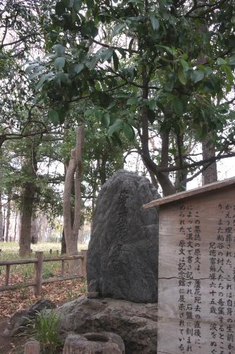 徳富蘆花のお墓