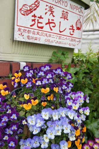 2011浅草花やしき