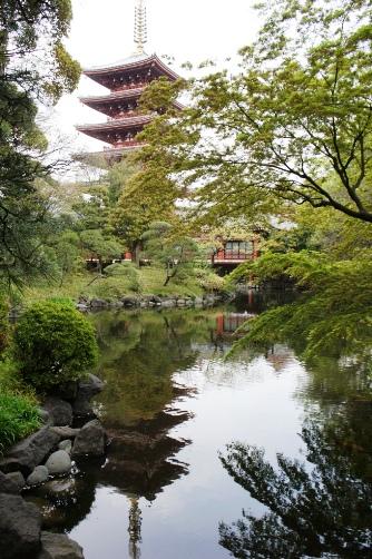 伝法院の池に写る五重塔