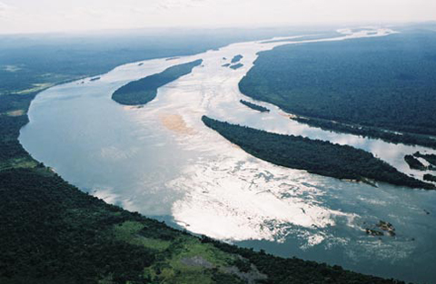 「 アマゾン シングー河」の画像検索結果