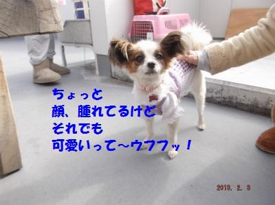 DSCF55212.jpg
