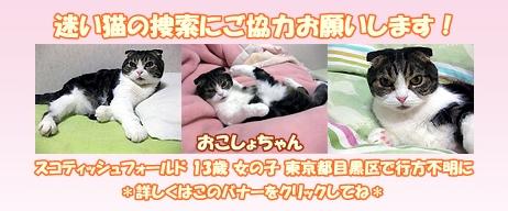 おこしょちゃんバナー_o