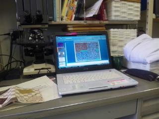 研究室のデスク