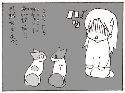 390-4.jpg