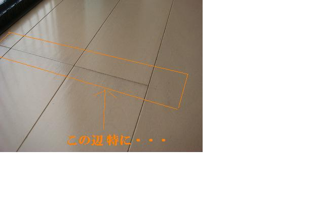 mn32.jpg