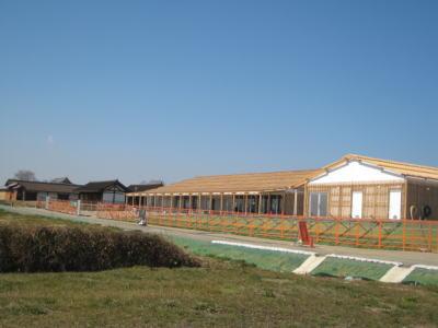 20100224-1.jpg