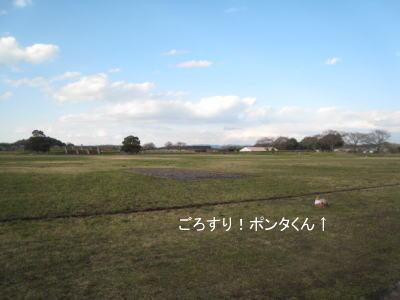 20100322-6.jpg