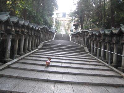 201031.jpg
