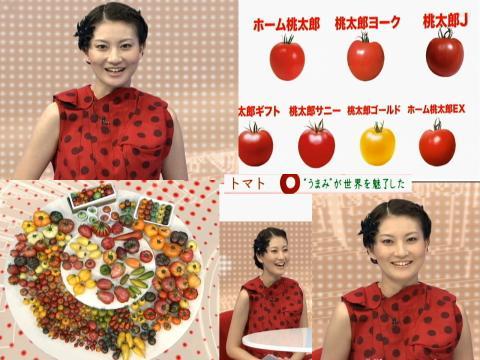 井上あさひ トマト・うまみが世界を魅了した