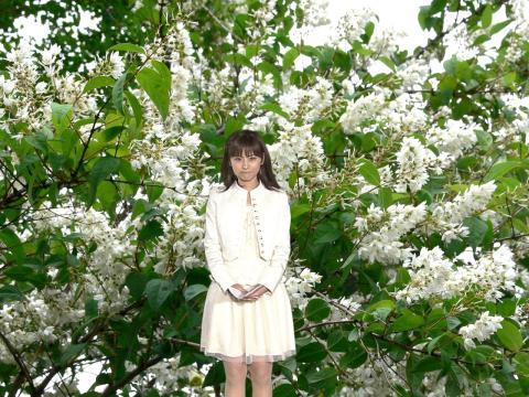 うがナツッ 卯の花の・・・・