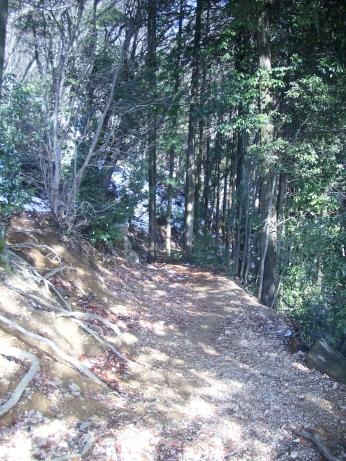 日和田山トレイル