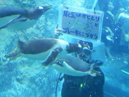旭山動物園7