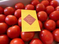 岩田農園のフルーツトマト