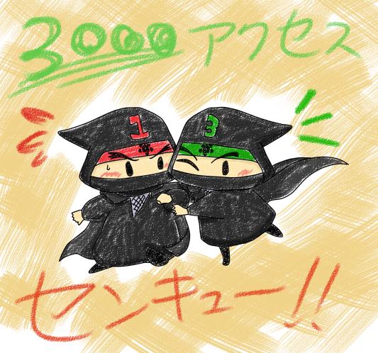 3000アクセス達成!!