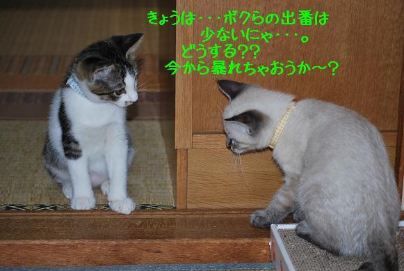 ヒロ旬1122