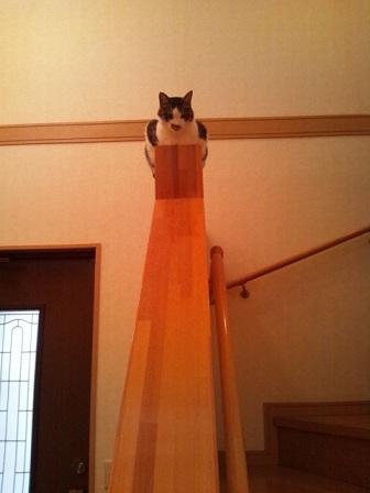 ヒロ階段てすり