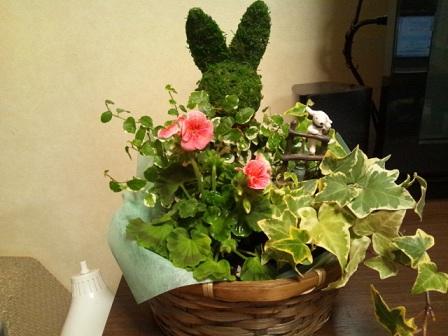 家の中の花