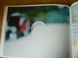 P1300360.jpg
