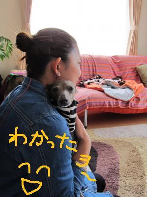 IMG_4705_convert_20110404174258.jpg