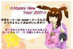 20110101110257db2.jpg
