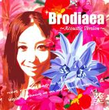 ジャケット_Brodiaea~AcousticVersion~