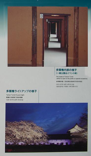 kouro5.jpg