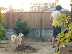 20130917_12.jpg