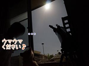 20130920_3_1.jpg