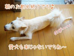 20131024_10.jpg