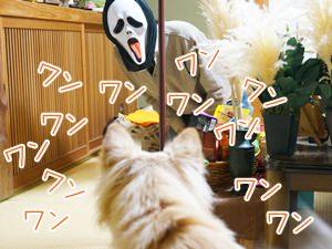 20131101_3.jpg