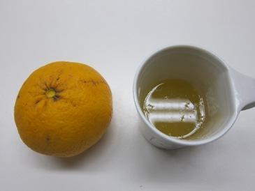 アポロ蜜柑ジュース