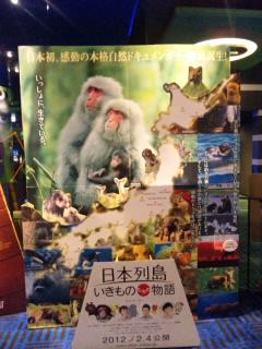 120206日本列島いきものたちの物語