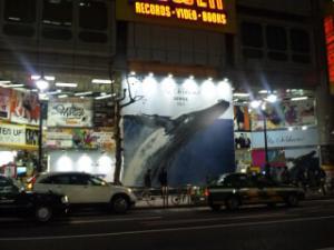 101201ミスチル渋谷タワレコ