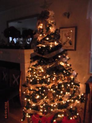 101219クリスマスツリーNHC