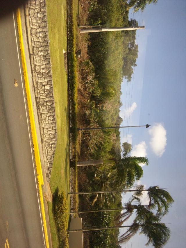 グアムの道