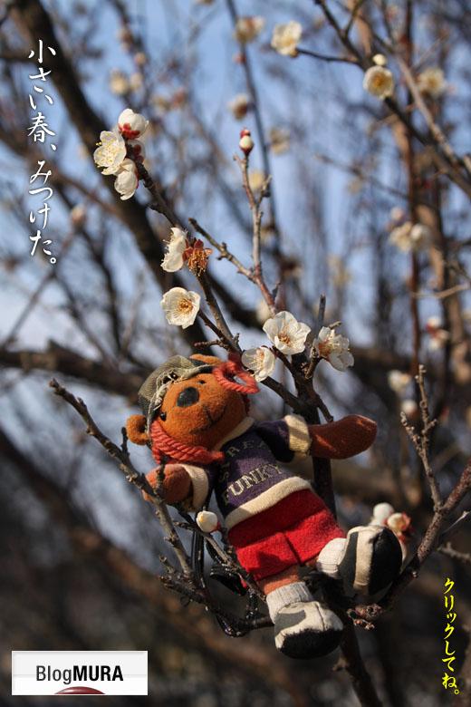 駿府公園・白梅バナー