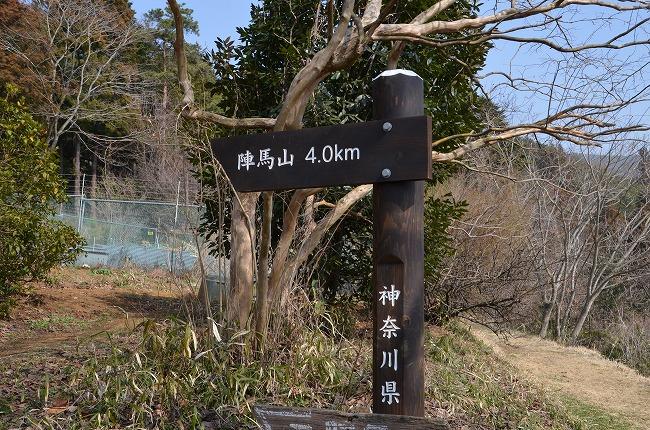 陣馬山_20130310_102426