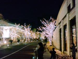 赤坂サカスイルミネーション1